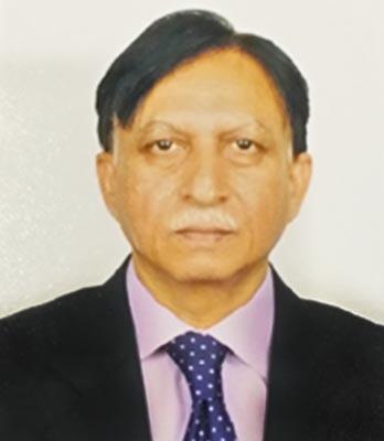 Prof. M. Ashraf Sultan